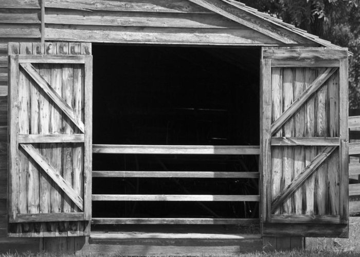Appomattox Greeting Card featuring the photograph Who Opened The Barn Door by Teresa Mucha