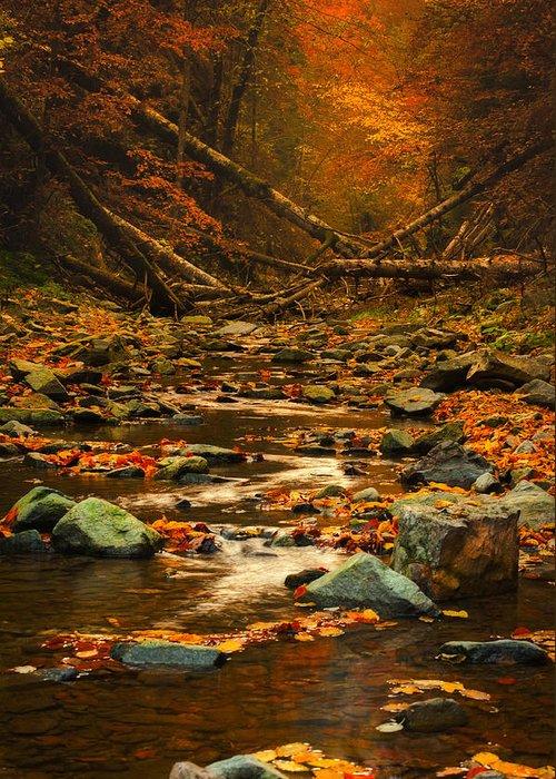 Rocks Greeting Card featuring the photograph Wild Valley by Irinel Cirlanaru