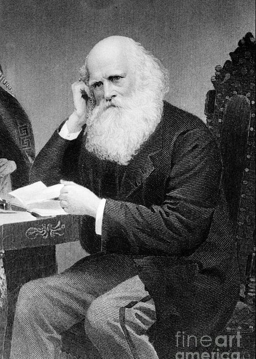 History Greeting Card featuring the photograph William Cullen Bryant, American Poet by Photo Researchers