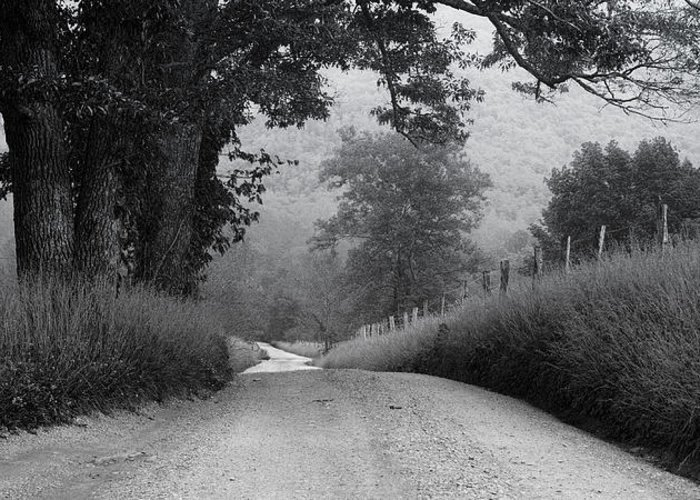 Cades Cove Greeting Card featuring the photograph Winding Rural Road by Andrew Soundarajan