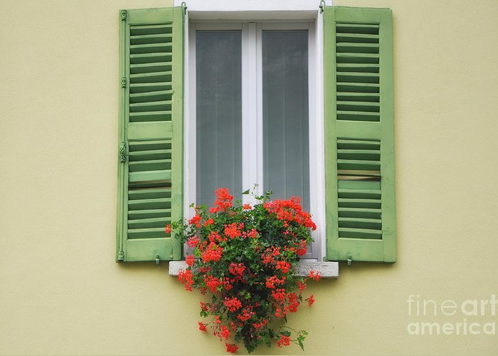Window Greeting Card featuring the photograph Window With Shutter Flowers by Mats Silvan
