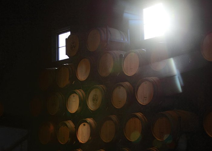 Wine Barrels Greeting Card featuring the photograph Wine Barrels by Viktor Savchenko