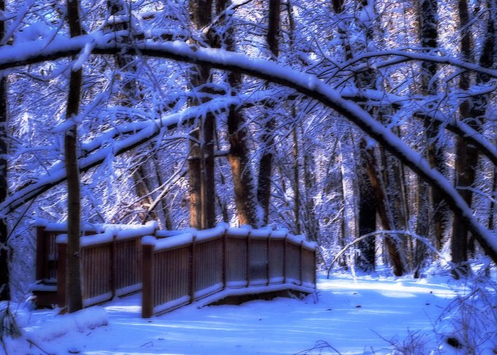 Pine River Nature Trail Greeting Card featuring the photograph Winter Bridge by Cheryl Cencich