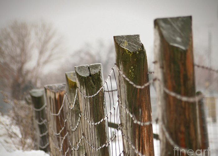 Cloud Greeting Card featuring the photograph Winter Fence by Sandra Cunningham