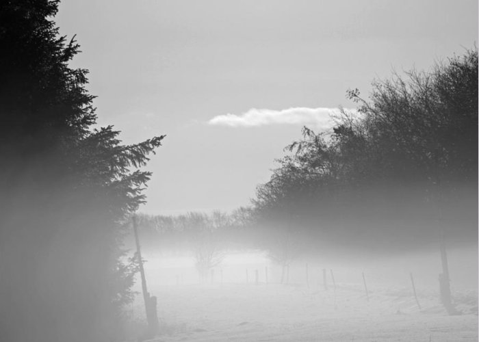 Winter Greeting Card featuring the photograph Winter Haze by Odd Jeppesen