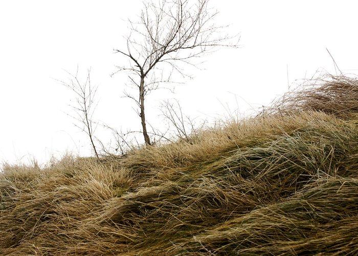 Wintry Greeting Card featuring the photograph Winter Landscape by Bernard Jaubert