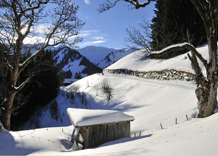 Winter Greeting Card featuring the photograph Winter Landscape by Matthias Hauser