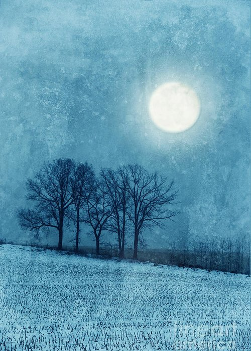 Moon Greeting Card featuring the photograph Winter Moon Over Farm Field by Jill Battaglia