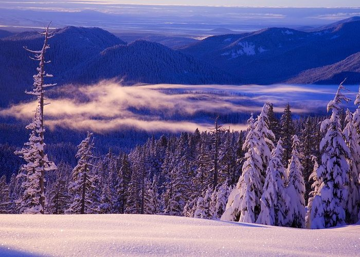 Beauty In Nature Greeting Card featuring the photograph Winter Snow, Cascade Range, Oregon, Usa by Craig Tuttle