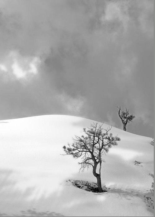 Winter Solitude Greeting Card featuring the photograph Winter Solitude by Viktor Savchenko