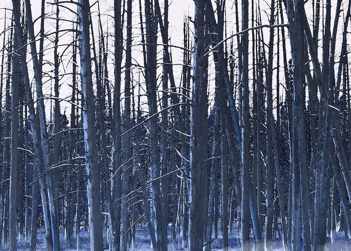 Nature Greeting Card featuring the digital art Winter Trees by Artist and Photographer Laura Wrede