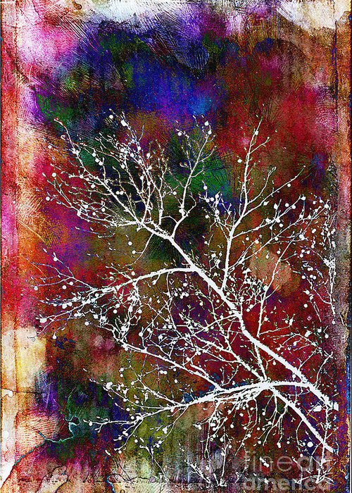 Winter Greeting Card featuring the photograph Winter Wishes by Judi Bagwell