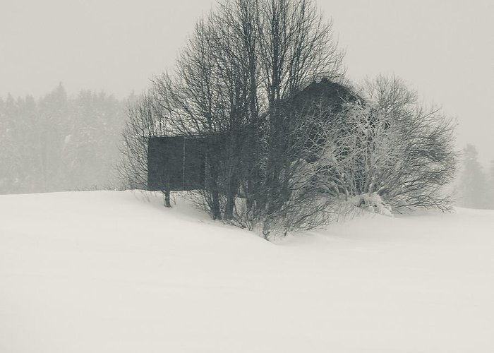 Finland Photographs Greeting Card featuring the photograph Winter World #2 by Nikolay Krusser