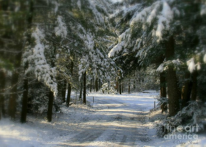 Winter Greeting Card featuring the photograph Winter's Tranquility by Debra Straub