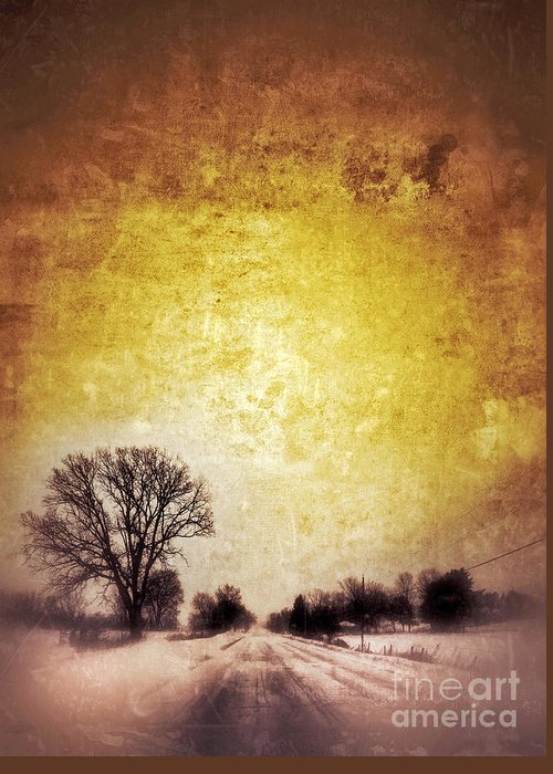 Tree Greeting Card featuring the photograph Wintery Road Sunrise by Jill Battaglia