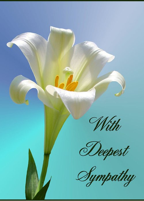 with deepest sympathy greeting card for sale by kristin