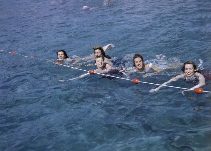 Outdoors Greeting Card featuring the photograph Women Swim In A Municipal Swimming Pool by B. Anthony Stewart