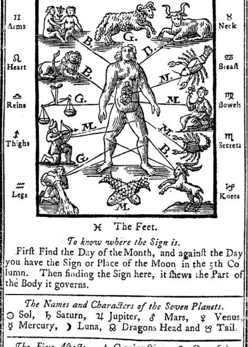 Science Greeting Card featuring the photograph Woodcut, 1750 by Science Source