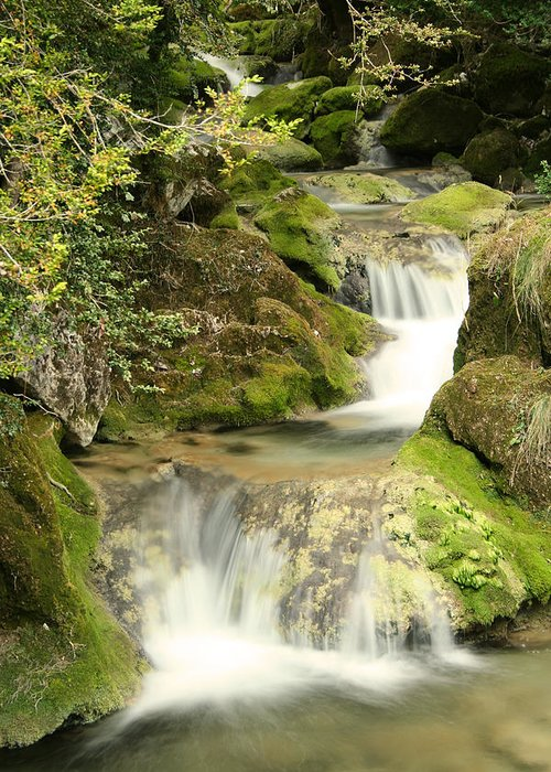 Waterfall Greeting Card featuring the photograph Woodland Waterfall by Victoria Hillman
