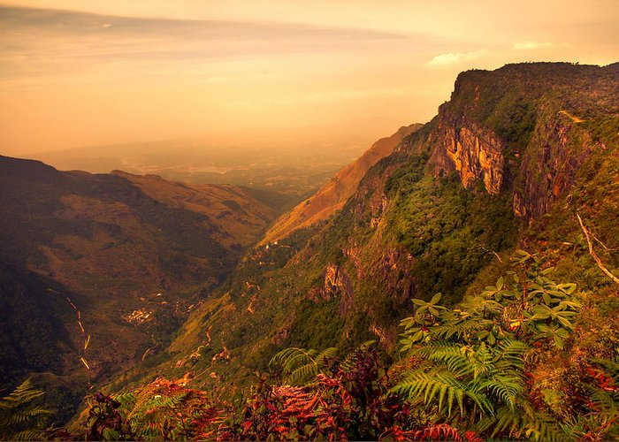 Nature Greeting Card featuring the photograph Worlds End. Horton Plains National Park. Sri Lanka by Jenny Rainbow