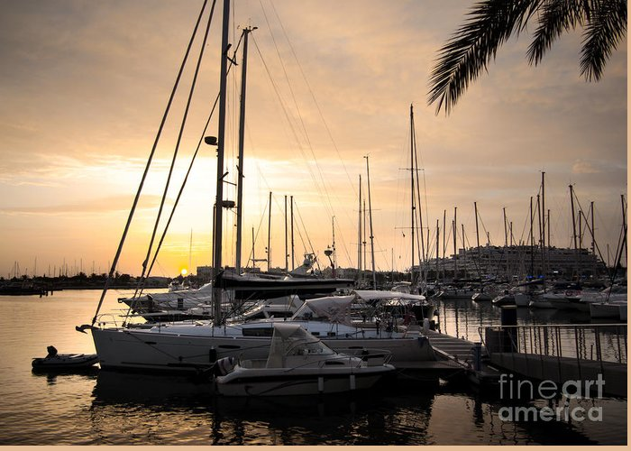Anchor Greeting Card featuring the photograph Yachts At Sunset by Carlos Caetano