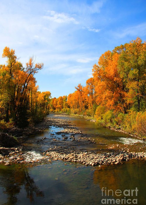 Yampa River Greeting Card featuring the photograph Yampa River by Dana Kern