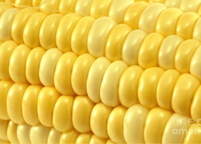 Sweet Corn Greeting Cards