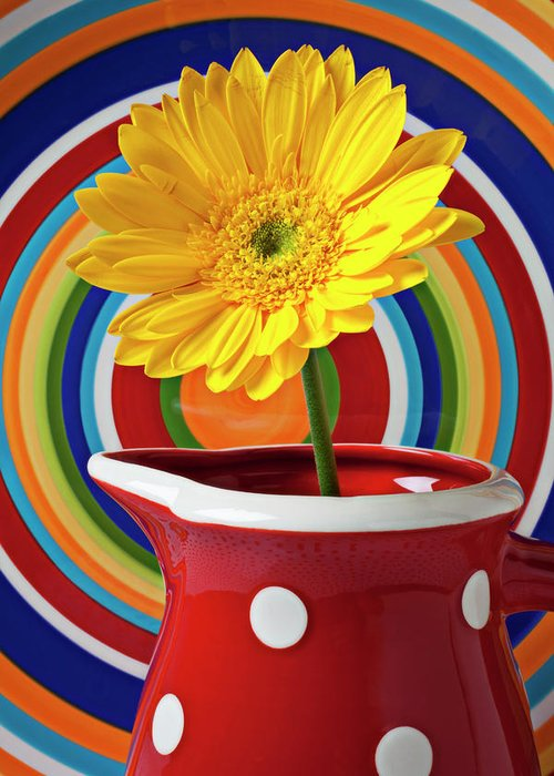 Yellow Daisy Red Pitcher Plate Greeting Card featuring the photograph Yellow Daisy In Red Pitcher by Garry Gay