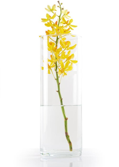 Asian Greeting Card featuring the photograph Yellow Orchid In Vase by Atiketta Sangasaeng