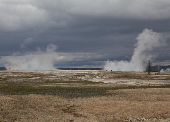 Geyser Greeting Card featuring the photograph Yellowstone Geysers2 by Charles Warren