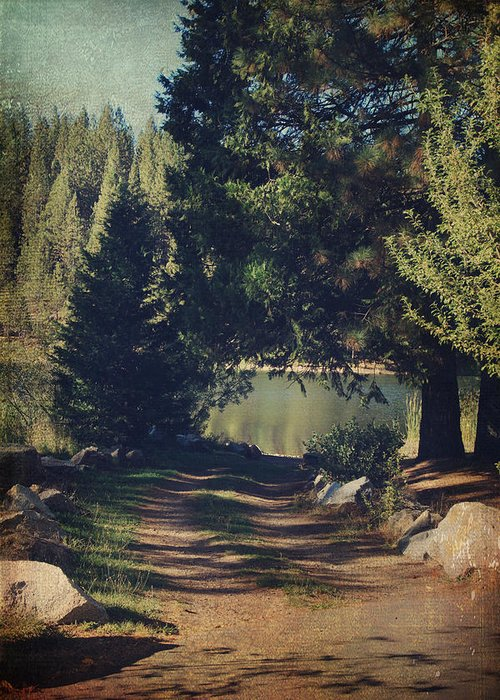 White Pines Lake Greeting Card featuring the photograph You'll Never Understand by Laurie Search
