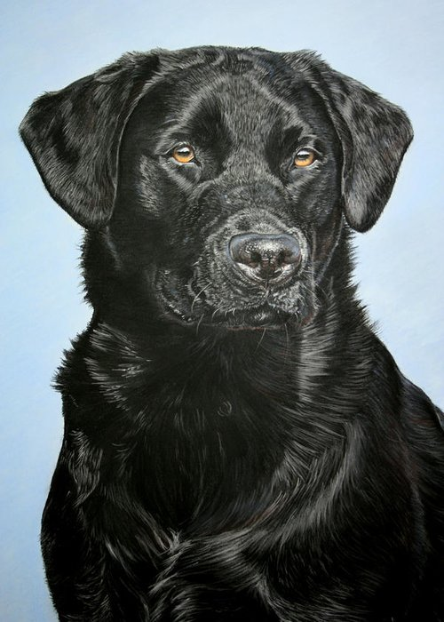 Dogs Greeting Card featuring the pastel Young Black Labrador by Lucy Swinburne