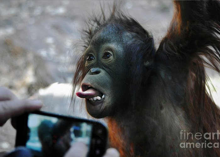 Baby Greeting Card featuring the photograph Baby Orangutan by Savannah Gibbs