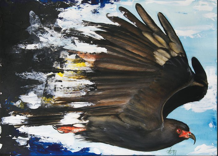 Bird Greeting Card featuring the mixed media Everglades Snail Kite by Anthony Burks Sr