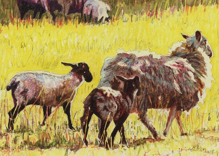Pasture Scenes Drawings Greeting Cards