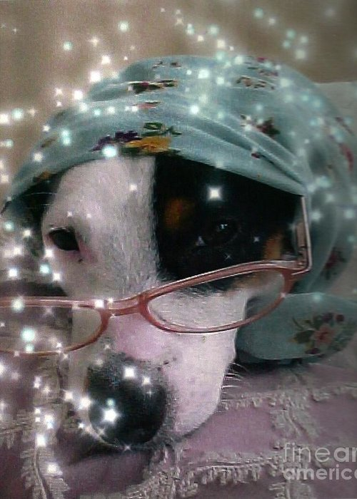Jack Russel Terrier Greeting Card featuring the photograph Jack Russell Winsdom by Leonor Shuber