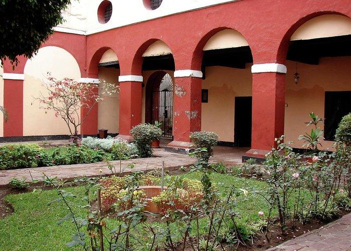 Lima Greeting Card featuring the photograph Lima Peru Garden by Brett Winn