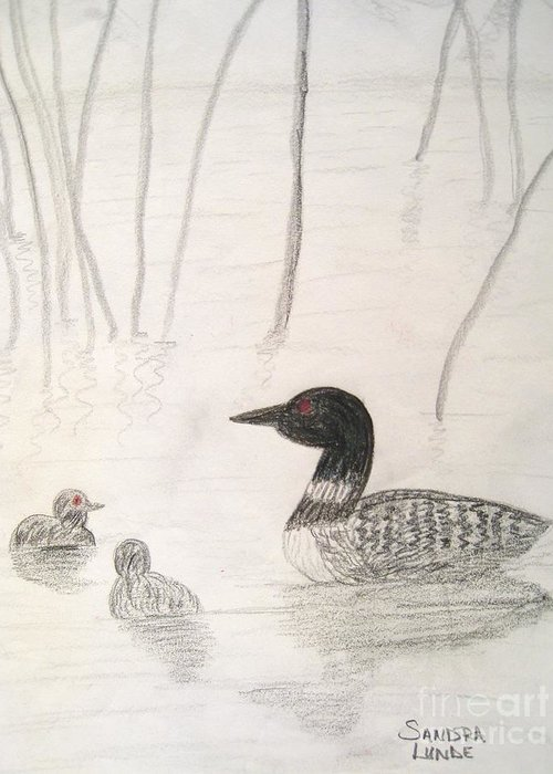 Loon Greeting Card featuring the drawing Loon Float by Sandra Lunde