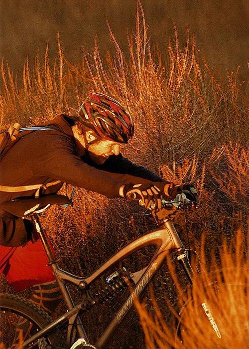 Mountain Greeting Card featuring the photograph Mountain Bike by Viktor Savchenko