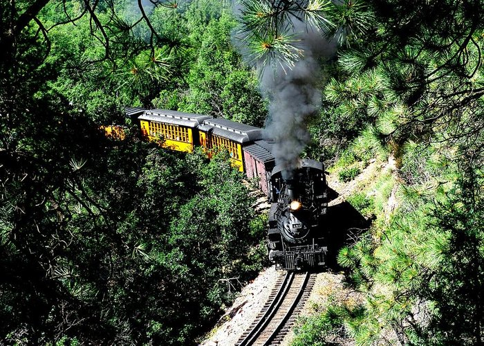 Train Greeting Card featuring the photograph Nostalgic Moments by Carol Milisen