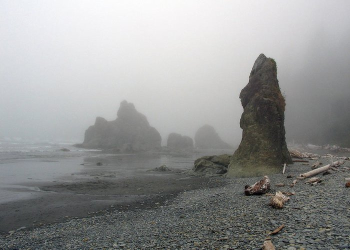 Landscape Greeting Card featuring the photograph Pillar In Fog by Ty Nichols