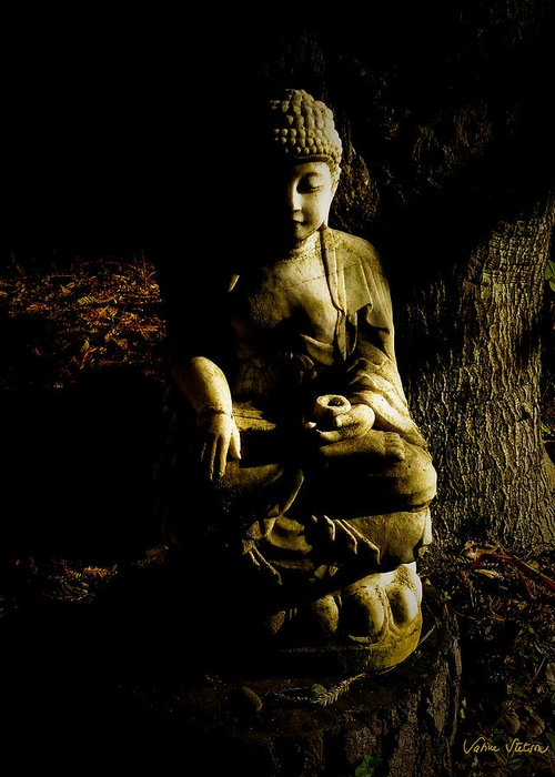 Buddha Greeting Card featuring the photograph Seeing The Light by Sabine Stetson