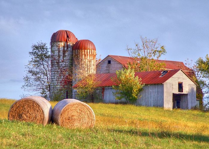 Barn Greeting Card featuring the photograph Two by Mitch Cat