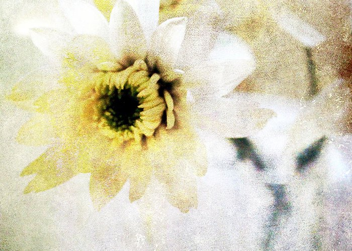 Flower Greeting Card featuring the mixed media White Flower by Linda Woods