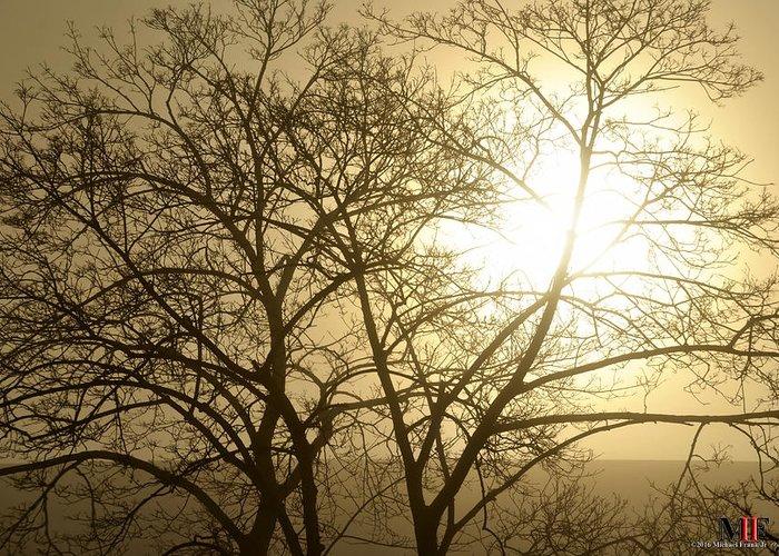 Buffalo Greeting Card featuring the photograph 01 Foggy Sunday Sunrise by Michael Frank Jr