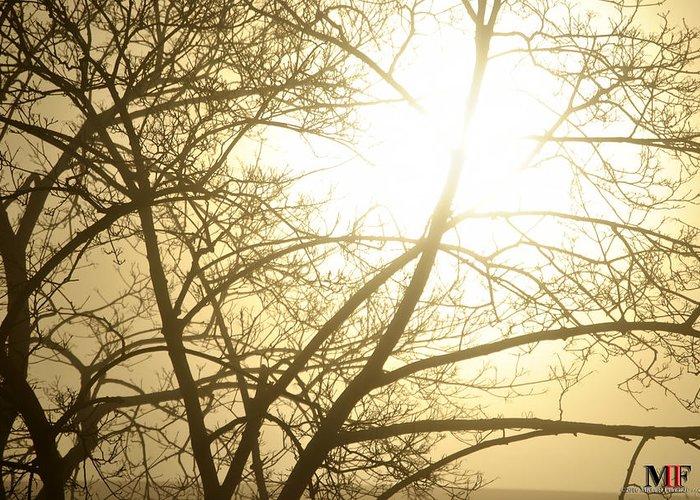 Buffalo Greeting Card featuring the photograph 03 Foggy Sunday Sunrise by Michael Frank Jr