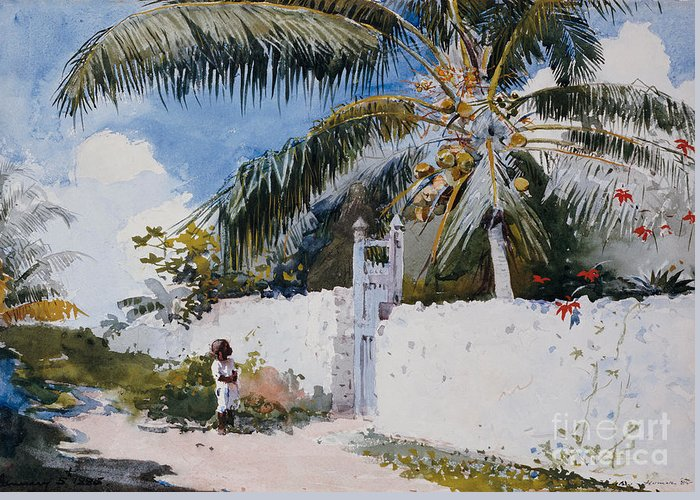 Winslow Homer Greeting Card featuring the painting A Garden In Nassau by Winslow Homer