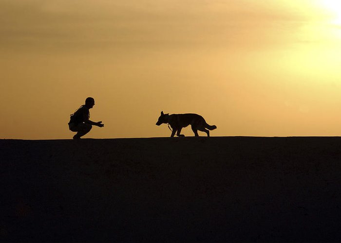 Operation Iraqi Freedom Greeting Card featuring the photograph A Military Working Dog And His Handler by Stocktrek Images