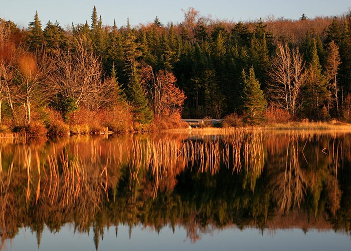 Adirondacks Greeting Card featuring the photograph Autumn Lake by Kate Leikin