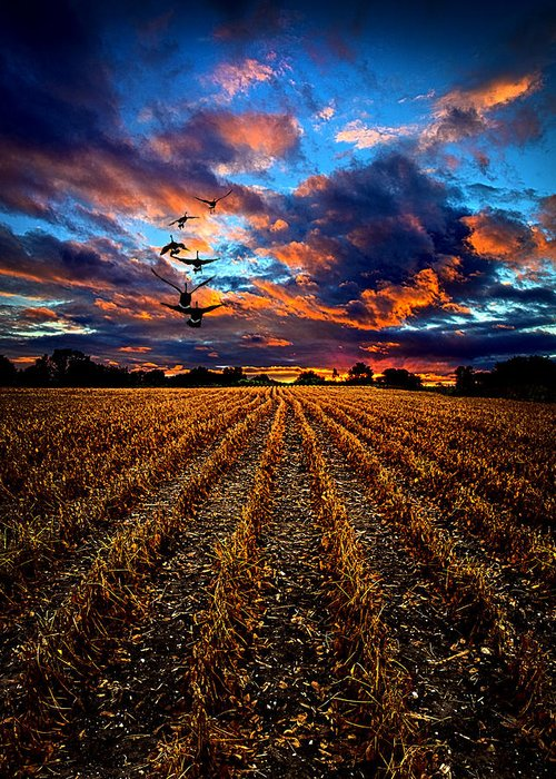 Horizons Greeting Card featuring the photograph Autumn Rising by Phil Koch